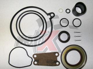Riebokšlių ir sandariklių komplektas viršutinė dalis OMC Cobra SX  nuo 1994  3850594
